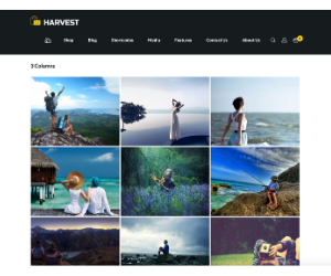 Harvest Gallery WP Theme