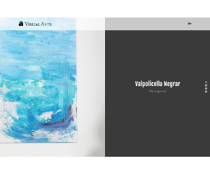 Visual Arts Gallery WordPress Theme